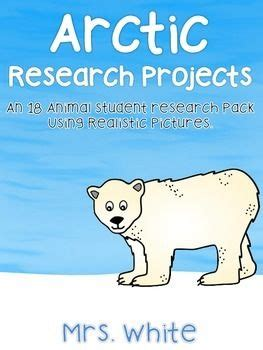 Using animals in research essay
